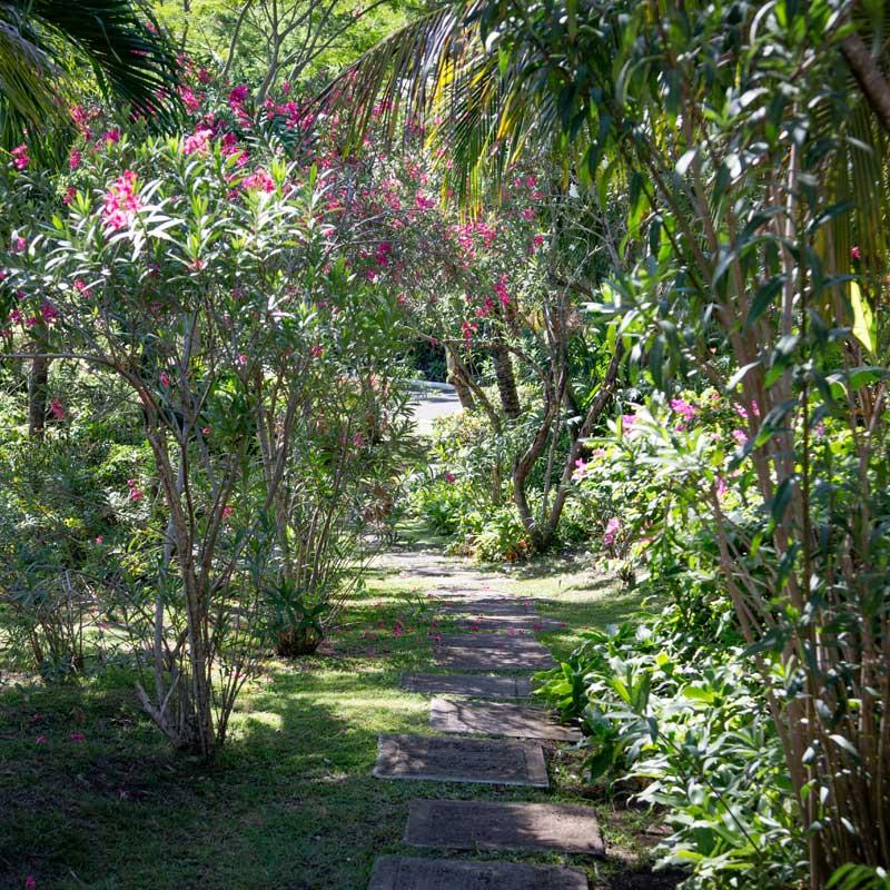 home-walkway